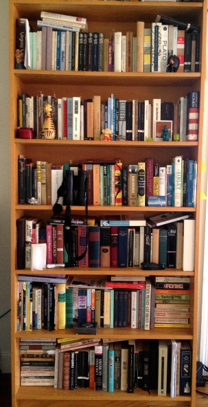 My actual bookshelves. Yes, I suppose they could use some tidying up.