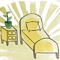The eco-friendly experts' guide to detoxifying your home